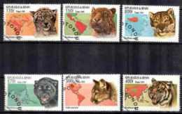 Animaux Félins Bénin (13) Série Complète De 6 Timbres Oblitérés - Big Cats (cats Of Prey)