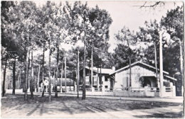 40. Pf. BISCARROSSE-PLAGE. Villas Dans Les Pins - Biscarrosse