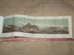 Panorama Vom Faulhorn Im Berner Oberland Map Karte Suisse Switzerland Suisse 1867 - Cartes Géographiques