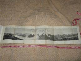 Panorama Vom Eggischhorn Grosser Aletsch Gletscher Map Karte Suisse Switzerland Suisse 1867 - Cartes Géographiques