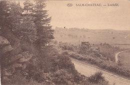 Salm-Château - Louisfât (Edit. J. Masson-Liesch) - Vielsalm
