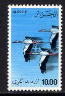 ALGERIE - A21** - VOL DE CIGOGNES - Algérie (1962-...)