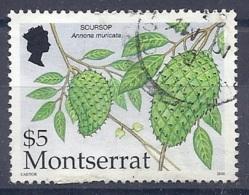 150025535  MONTSERRAT  YVERT    Nº  1062 - Montserrat
