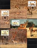 Dokumentation 1993 Gazelle WWF-Set 155 Obervolta 1298/1 MKt.24€ Naturschutz Rotstirngazelle Wild-life Cards Burkina Faso - Burkina Faso (1984-...)