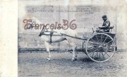 Caporale à M. Pujol - Calèche Attelage Hippisme - Course De La Petite Gironde - Fiacre - 2 SCANS - Cartes Postales