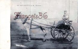 Soubrette à M. Bridon - Calèche Attelage Hippisme - Course De La Petite Gironde - Fiacre - 2 SCANS - Cartes Postales