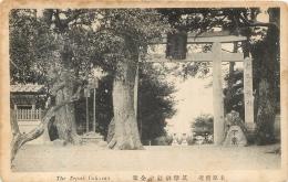 THE TEPUL TUKAMA - Postcards