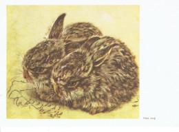 LAPEREAUX Par HANS LANG - Animals