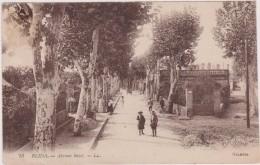 Cpa,afrique Du Nord,Algérie,nord D´alger,BLIDA, Avenue BIZOT En 1900,belle Avenue Animée ,pleins D´arbres,rare