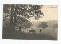 Cp , Agriculture , élevage , Vache , Vacher , Parairies Bretonnes , Voyagée 1908 , Ed : EH , Breiz , 22 , Vaublanc - Viehzucht