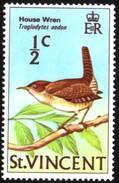 House Wren Mm Stamp - Songbirds & Tree Dwellers
