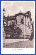 GOLEGÃ - CHALET RELVAS .. Edição - Casa Brogueira / 2 Imagens - Santarem