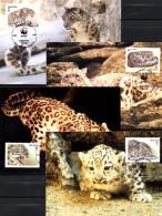 Maxicard Naturschutz WWF-Set 163 Kirgistan 22/5 MC 12€ Schnee-Leopard Dokumentation 1994 Wild-life Cards Kyrgyzstan ASIA - Kirghizistan