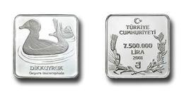 AC - WHITE HEADED DUCK OXYURA LEUCOCEPHALA COMMEMORATIVE SILVER COIN BIRDS OF TURKEY SERIES #15 TURKEY 2001 PROOF UNC - Turkey