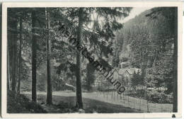 Hotel Wolfbachmühle - Zorge - Hohegeiß - Allemagne