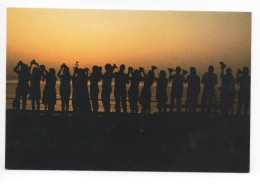 Ghazieh Beach , Photographers From Lebanon Night , Carte Postale Liban Libano - Lebanon