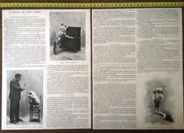 DOCUMENT ANNEE 1900 LE DRESSAGE DES CHIENS SAVANTS MR TAFFARY - Non Classés