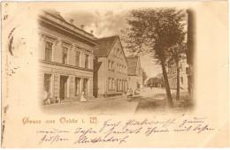 Gruss Aus OELDE WestfalenKr Warendorf Belebt Straße B Linnemann & Co Colonialwaren 31.12.1899 Gelaufen - Warendorf