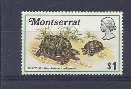 150025573  MONTSERRAT  YVERT    Nº    281  **/MNH - Montserrat
