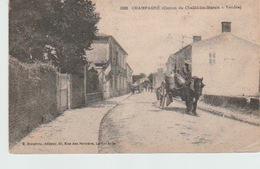 CHAMPAGNÉ  ( CANTON  DE  CHAILLÉ-LES-MARAIS ) - Other Municipalities