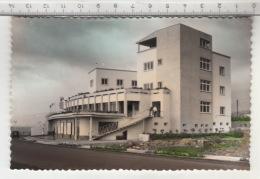 Tenerife - Hotel Bélgica Del Puerto De La Cruz (1962) - Tenerife