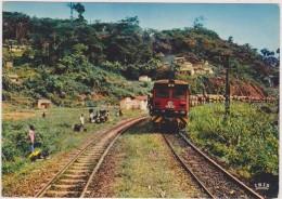 AFRIQUE,CONGO,transport De Grumes,par Rail,chemin De Fer,train,vu Sur N´ SITOU,et Les Habitants,rail,metier - Congo Français - Autres