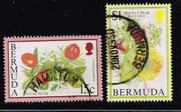 Bermuda, Michel# O Früchte - Bermuda