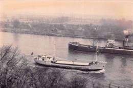 """¤¤  -   Cliché D´un Bateau De Commerce  -  Cargo """"  MARGARITA B  """"    -  Voir Description   -  ¤¤ - Commercio"""