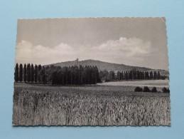 Zicht Van De KEMMELBERG Vue Du MONT () Anno 195? ( Zie Foto Voor Details ) !! - Heuvelland