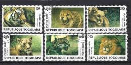 Animaux Félins Togo (129) Série Complète De 6 Timbres Oblitérés - Big Cats (cats Of Prey)