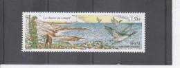 SAINT-PIERRE Et MIQUELON -  La Chasse Au Canard : Chasseur Et Chien Avec Canard Dans La Gueule - St.Pierre & Miquelon