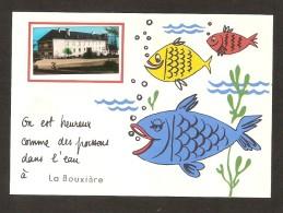 On Est Heureux Comme Des Poissons Dans L´eau à La BOUXIERE (35 ) - France