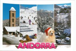 Souvenirs D'Andorre L'hiver, Chien , Carte Postale Neuve, Non Circulée. - Andorre