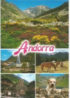Souvenirs D'Andorre L'été, Carte Postale Neuve, Non Circulée. - Andorre