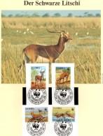 Schwarzer Litschi 1987 Wasser-Bock WWF-Set 57 Sambia 438/1 O 9€ Naturschutz Dokumentation Wild-life Cards Of ZAMBIA - Used Stamps