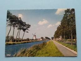 De Molen En Kanaal Brugge-Sluis () Anno 1965 ( Zie Foto Voor Détails ) !! - Damme
