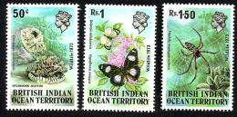BRITISH INDIAN OCEAN TERRITORY INSECTS  MARINE LIFE QEII HEAD SET OF 3 50 CENTS-1.50R SG53-5 MINT1973 READ DESCRIPTION - British Indian Ocean Territory (BIOT)