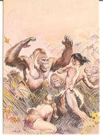 CARD COMIC IMAGES FRAZETTA 14 THE SON OF TARZAN 1993 - Altri