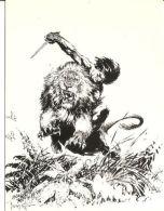 CARD COMIC IMAGES FRAZETTA 2 TARZAN KILLS LION 1993 - Altri