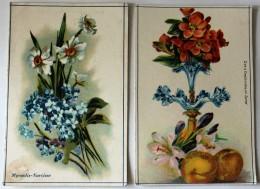 2 Chromo Fleur Lys Cognassier Du Japon Myosotis Narcisse Librairie éducation Nationale - Andere