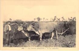 """AGRICULTURE Le Labourage - """" Les Travaux Champêtre """" Attelage De Deux Boeufs - CPA - - Landwirtschaftl. Anbau"""