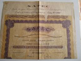 Société Anonyme Française D´Exploitation Cinématographique  -  Action De 100 Francs N°1286 - Cinéma & Théatre
