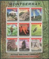 Montserrat 1997 Vulkanausbruch Gefährd. Vogelarten 1008/16 K Postfrisch (C12592) - Montserrat