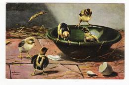 POUSSINS  ( Illustrateur  :  M. SCHÖNIAN , Munchen ) /  Edit.  T.S.N. , Série  N° 651 - Otros