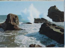 Japan Japanese Japon Hotate Rock Inubozaki Cape Wave Post Card Postkarte POSTCARD - Japon
