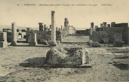 Algérie - Tébessa - Basilique Byzantine - Vasque Aux Ablutions Et La Cour - Bon état Général - Tebessa