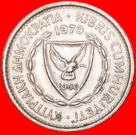 § ERROR. CEDAR Of LEBANON: CYPRUS ★ 25 MILS 1979! LOW START  ★ NO RESERVE! - Errors And Oddities