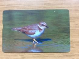 210 U. China / Korea ??  Bird   -  Fine Used Condition - Telefoonkaarten