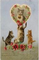 Cpa Chats, Chatons ( Argentée ) ( AN ) - Katzen