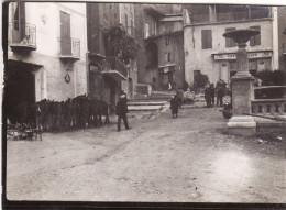 Photo Octobre 1931 DIGNE-LES-BAINS - Le Marché Aux Moutons Et Aux Chevaux, Un Café (A152) - Digne